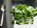 Bunch of coriander leaves